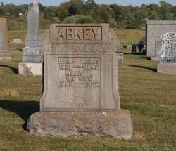 Mary Ann <i>Boatright</i> Abney