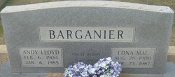 Andy Lloyd Barganier