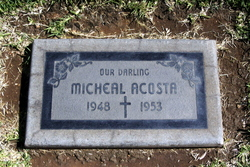 Micheal Lawrence Acosta