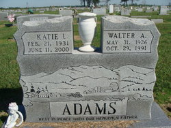 Katie L Adams