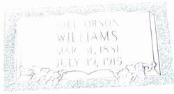 Joel Orson Williams