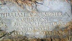 William Albert Pulsipher