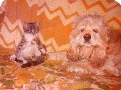 PEPSI AND BUFFY