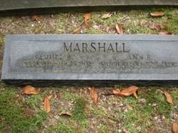 Ann B. Marshall