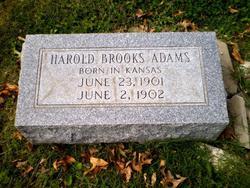 Harold Brooks Adams