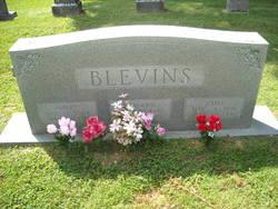 Albert Blevins