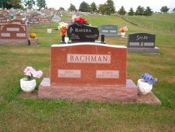 Flavis Lloyd Bachman