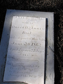 David H Beck