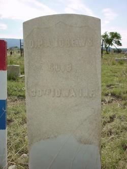 D. P. Andrews