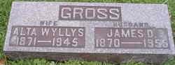 James Dimon Gross