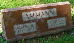 Albert H. Ammann