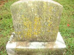 Mary F Carpenter