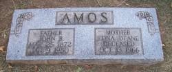 Edna Deane <i>Hubbell</i> Amos
