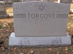 Leo Torgove