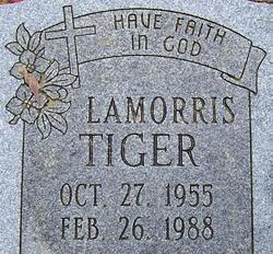 Lamorris Tiger