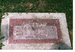 Alida A. E. Amschler