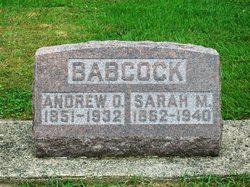 Sarah Marie <i>Cripe</i> Babcock
