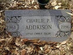 Charlie Palmer Addkison