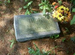 Infant Son Thorn