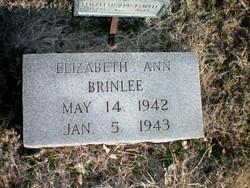 Elizabeth Ann Brinlee