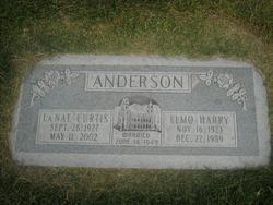 Elmo Harry Anderson