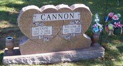 William Harvey Cannon