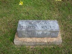 Eliza <i>Hall</i> Benbrook