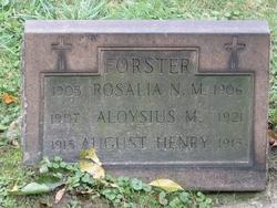 Aloysius M Forster