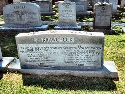 Jack E. Krawcheck