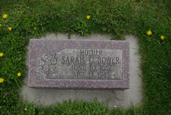 Sarah C Bower
