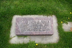 Ted M Bower