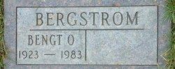 Bengt O Bergstrom