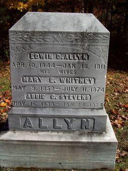 Abbie C <i>Stevens</i> Allyn