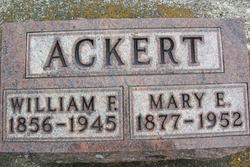 William F Ackert