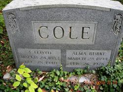 A Lloyd Cole