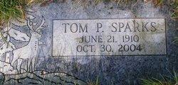 Tom Payne Sparks