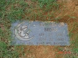 Matthew L. Brown