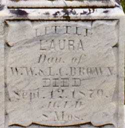 Laura Little Brown