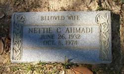 Nettie Catherine <i>Arata</i> Ahmadi