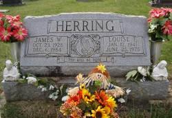 James Walter Herring