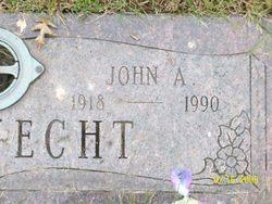 John Alfred Bauknecht