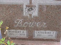 Norbert A Bower