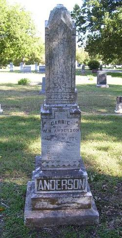 Carrie Mae <i>Owens</i> Anderson