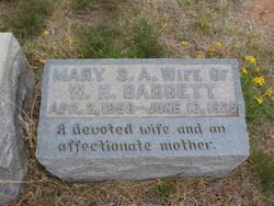 Mary S. E. <i>Cameron</i> Badgett