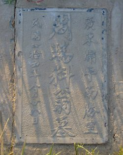 Chinese Symbols Unknown