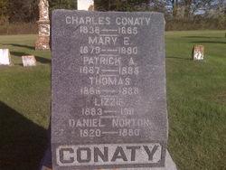 Patrick A Conaty