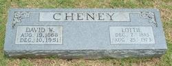 David W. Cheney