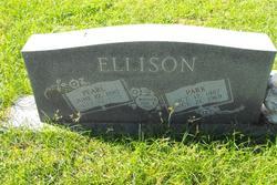 Patrick Park Ellison