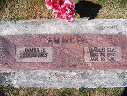 Mamie Sue <i>Blanton</i> Ammons