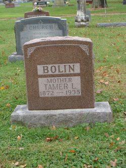 Tamer L. Bolin